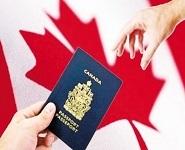加拿大留学签证最新政策双录取学签收紧